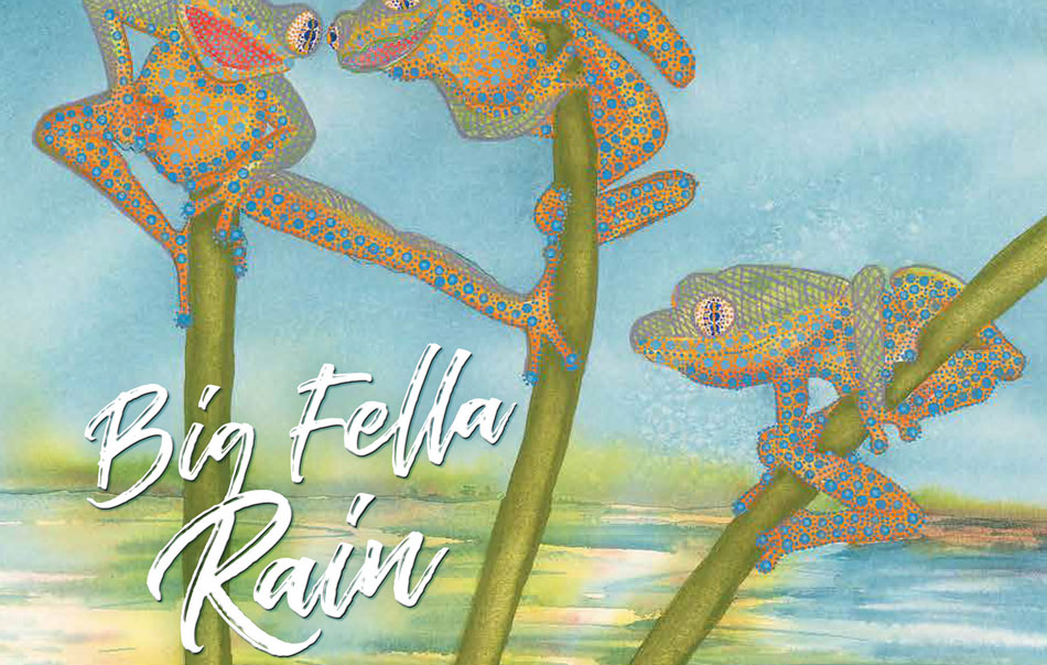 Mother Earth welcomes the wet in stunning picture book Big Fella Rain